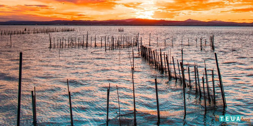 Los ríos españoles, en estado crítico