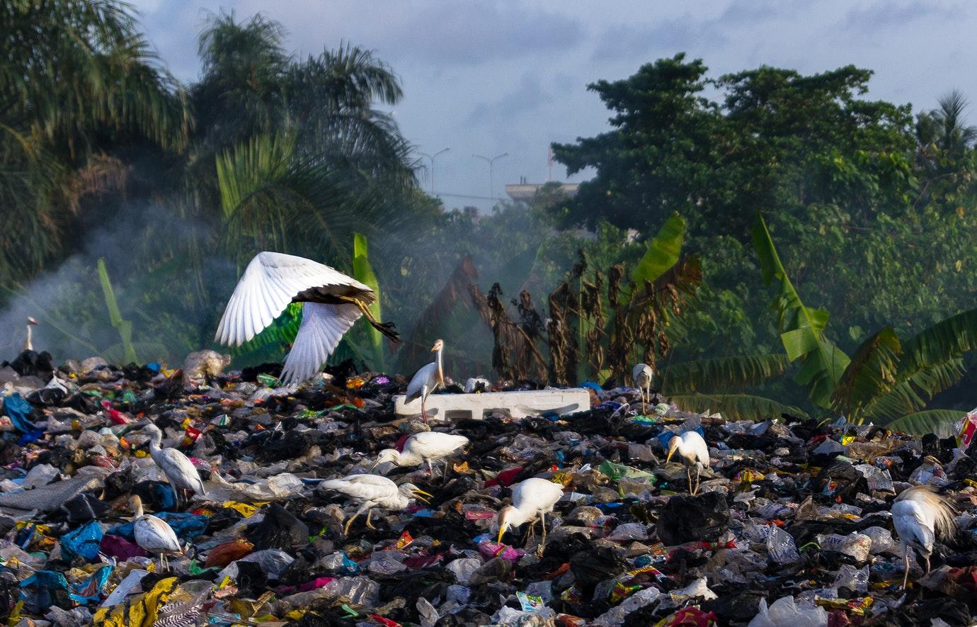 2,2 millones toneladas de residuos en la Comunidad Valenciana